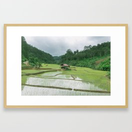 RICE PADDIES Framed Art Print