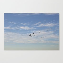 Untitled from Rat Beach series Canvas Print