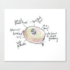 Kiwi fruit. Canvas Print