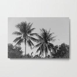 coconut tree Metal Print