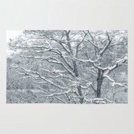 Winter Moods 1 Rug