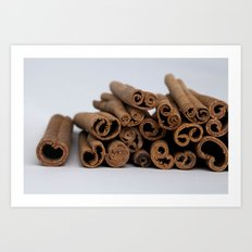 Cinnamon Spice - Kitchen Still Life Art Print
