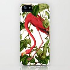 Flamingo iPhone (5, 5s) Slim Case