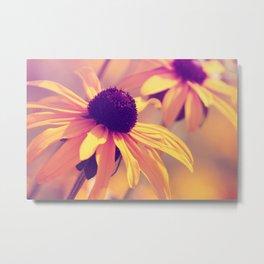 Yellow Flower - Rudbeckia Metal Print
