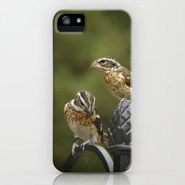 Grosbeaks Three iPhone Case