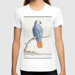 Gray red-tailed parrot psittacus erithacus (1596-1610) by Anselmus Botius de Boodt T-shirt