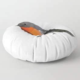 Geo - Robin Floor Pillow