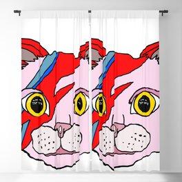 Heroes Cat Head Blackout Curtain
