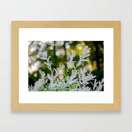 Sunshine Flowers Framed Art Print