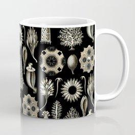 Ernst Haeckel - Scientific Illustration - Calcispongiae Coffee Mug