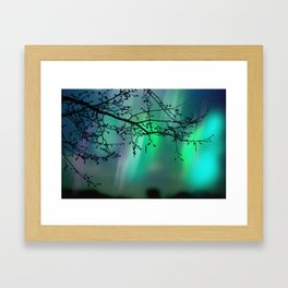 Tree Branch and Aurora Borealis Night Sky Framed Art Print