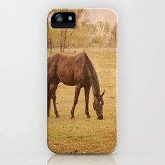 Horse Photograph. Wisconsin Landscape and Nature. Horse Grazing.   Slim Case iPhone (5, 5s)