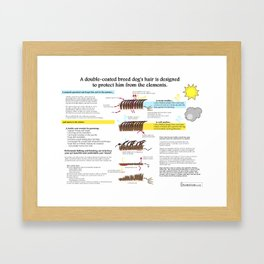 Double-Coated Breed Dog Grooming Infographic Framed Art Print