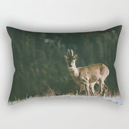 Hello spring! - Landscape and Nature Photography Rectangular Pillow