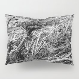 Windswept Woodland Mono Pillow Sham