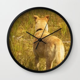 What does Maisie see? Wall Clock