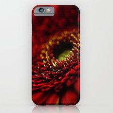 Red Gerbera Slim Case iPhone 6s