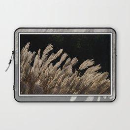 YAKU JIMA GRASS IN BACKLIT SUN Laptop Sleeve