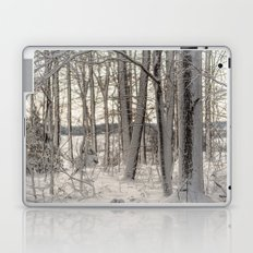 Snow Oak Laptop & iPad Skin