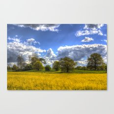 The Arrival Of Summer Canvas Print