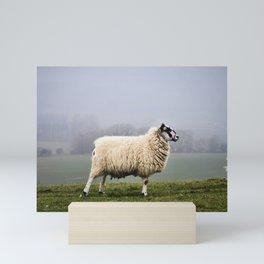 Sheep Life IV Mini Art Print