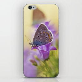 Blue winged butterfly iPhone Skin