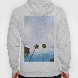 Sinkhole Palms Hoody