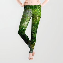 The Old Pali Cathedral Leggings