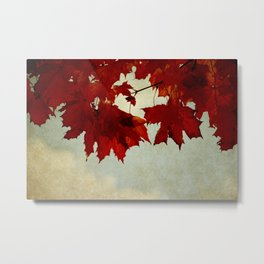 Autumn- the most colorful of all seasons! Metal Print