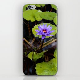 Water Lily Dreams iPhone Skin