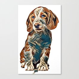Dachshund puppy, Westphalian Dachsbracke on white background        - Image Canvas Print