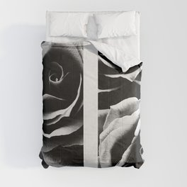 Devoted  Comforters
