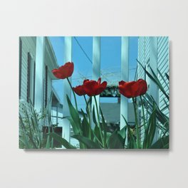 Tulips in the Breeze Metal Print