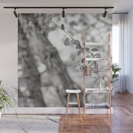 Woods Secrets. Mistery Into The Deep Forest Wall Mural