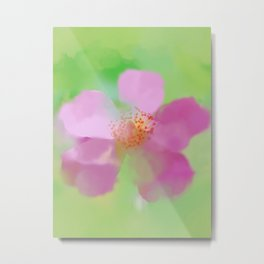 Ballerina Rose, Painterly Metal Print
