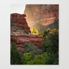 Glowing Tree at Sedona Bell Rock Trail Canvas Print