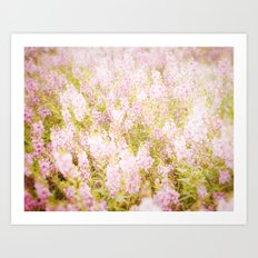 Summer Pink Art Print