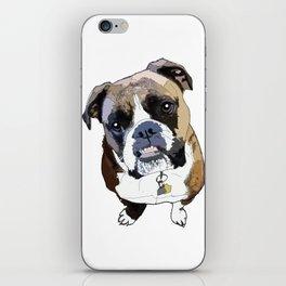 Boxer Dog iPhone Skin