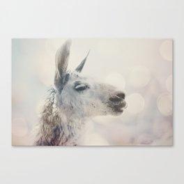 Alpaca in Machu Picchu Canvas Print