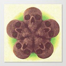 Skull Mandala Test No.1 Canvas Print