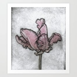 Chromatic Orchid Art Print