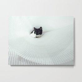tunel cat 1 Metal Print