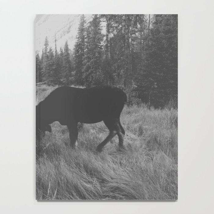 Moose Battle Notebook