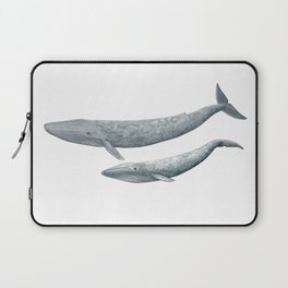 Blue whales (Balaenoptera musculus) - Blue whale Laptop Sleeve