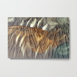 Earth Nia Metal Print