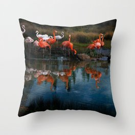 Flamingo Convention Throw Pillow