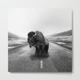 Road Walker Metal Print