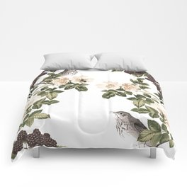 Blackberry Patch Comforters