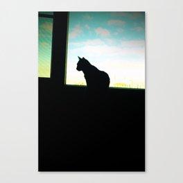 Cat Noir Canvas Print