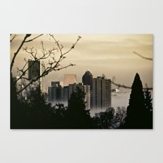 a visit from heaven Canvas Print